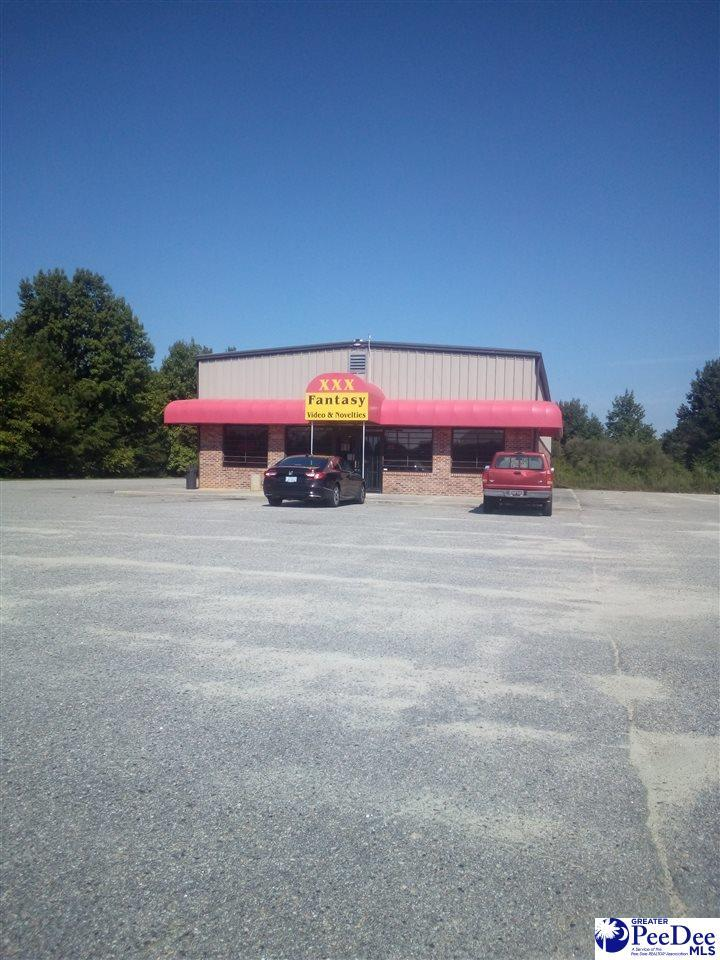 3105 Highway 301 - Photo 1