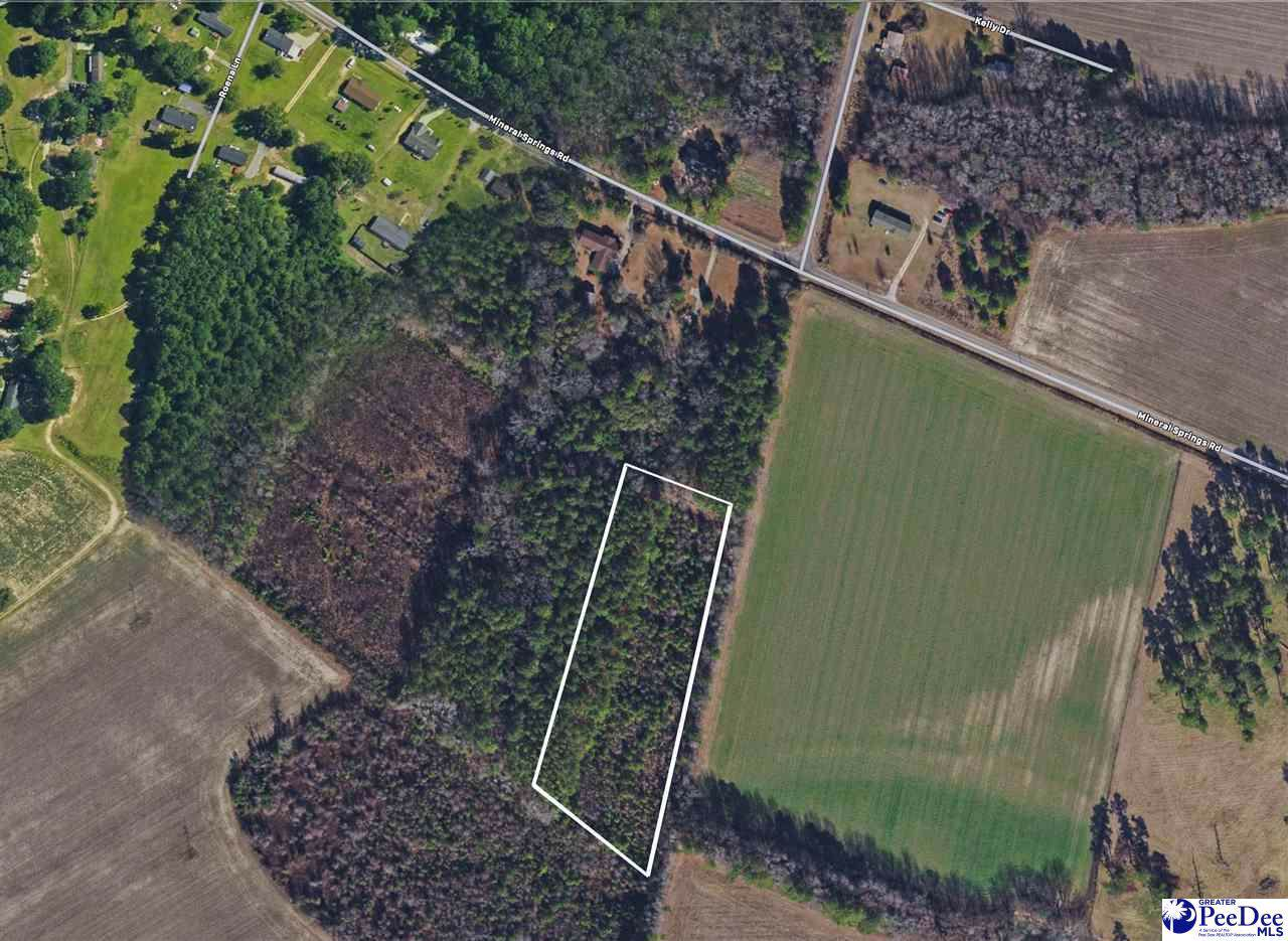 TBD Off Mineral Springs Rd - Photo 1
