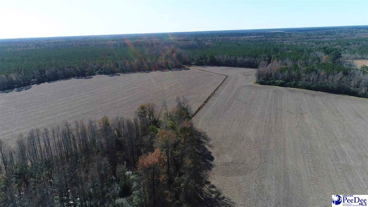 450 acres Journeys End Rd - Photo 1
