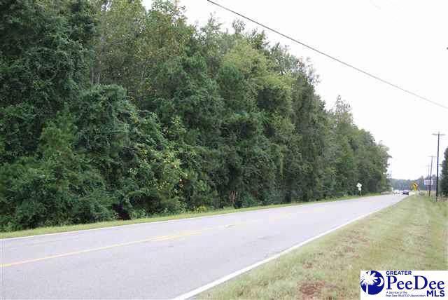 TBD Mccormick Road - Photo 1