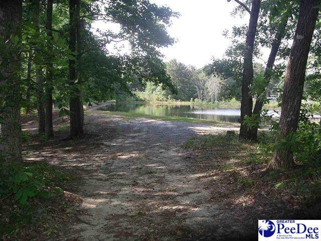 Hwy 270-34 West Tbd, County, SC 29565 (MLS #20200730) :: RE/MAX Professionals