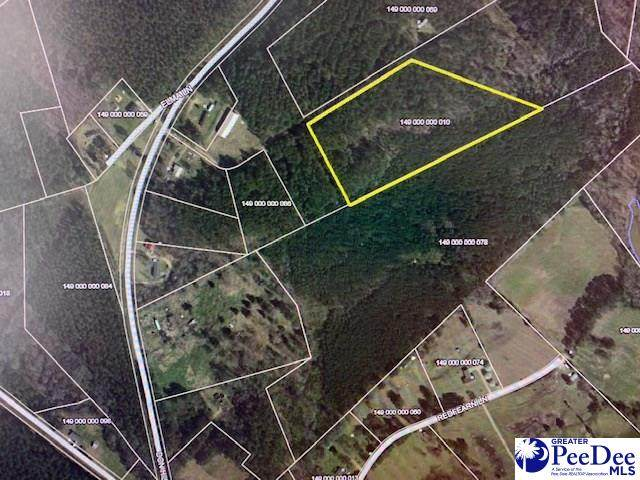 6.90 +/- Tract Near Don Hill Rd - Photo 1