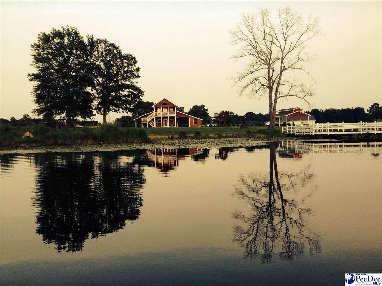 1041 Spring Acres Drive - Photo 1