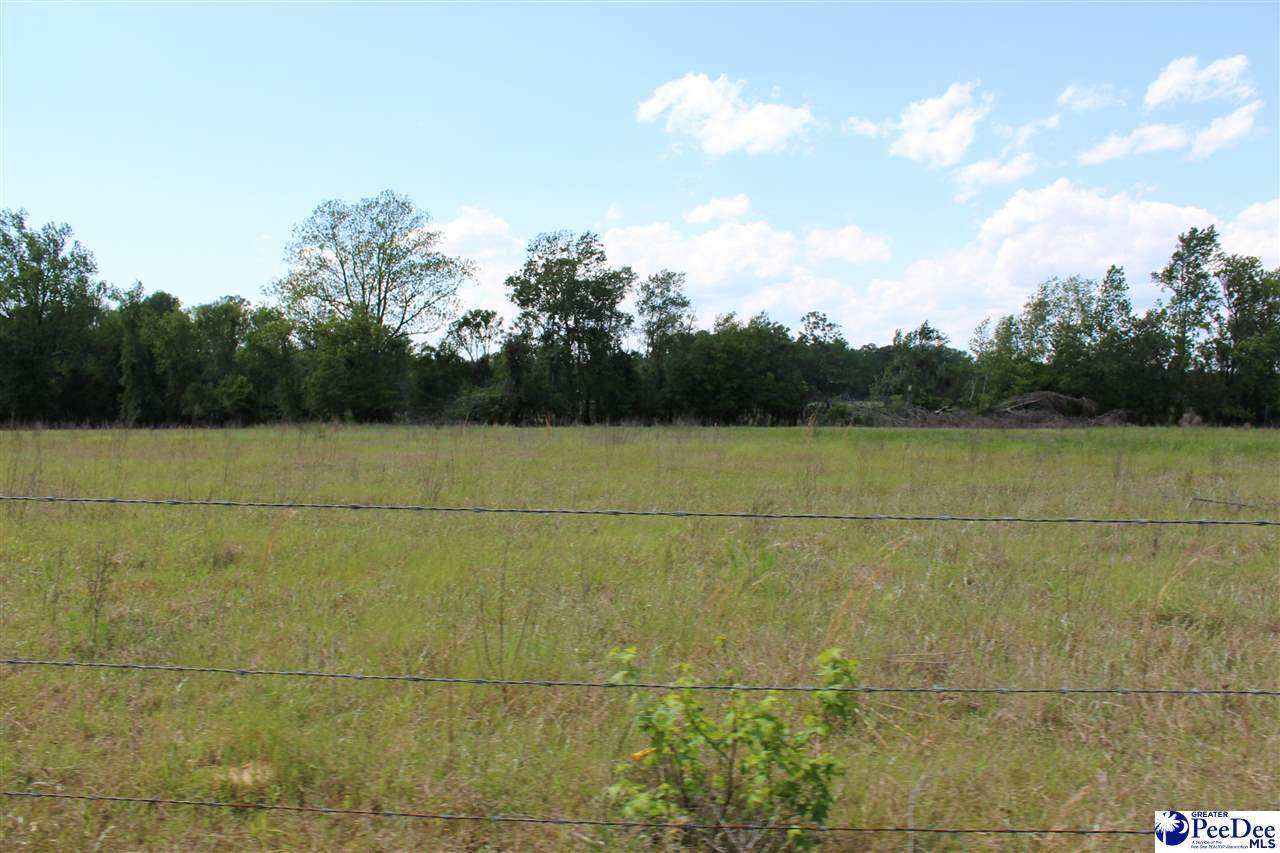 88.37 ac Lynches River Road - Photo 1