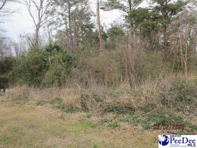 tbd S17-300, Lake View, SC 29563 (MLS #20201374) :: Crosson and Co
