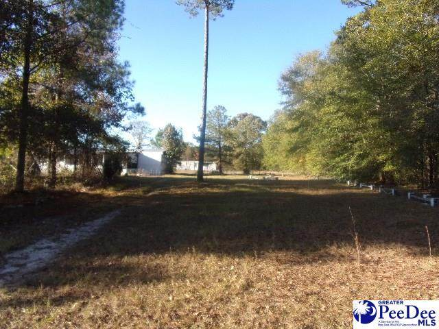 1068 Andrews Mill Rd - Photo 1