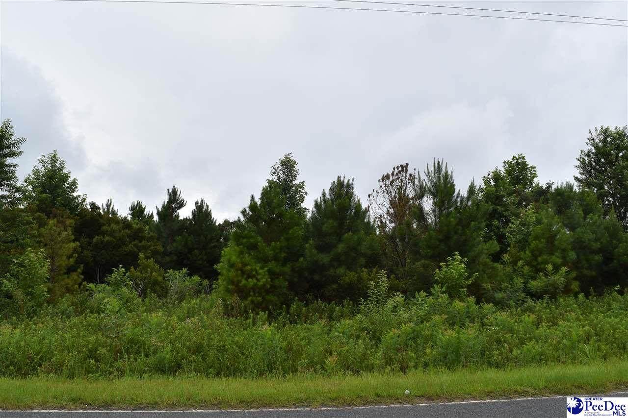 TBD Delta Mill Road - Photo 1