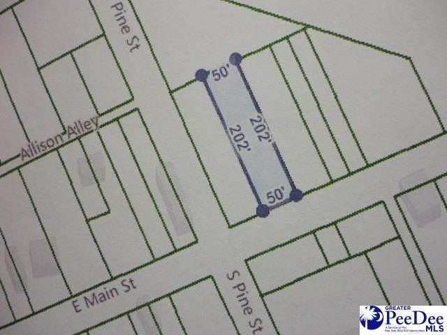 411 E Main Street, Pamplico, SC 29583 (MLS #20202025) :: RE/MAX Professionals