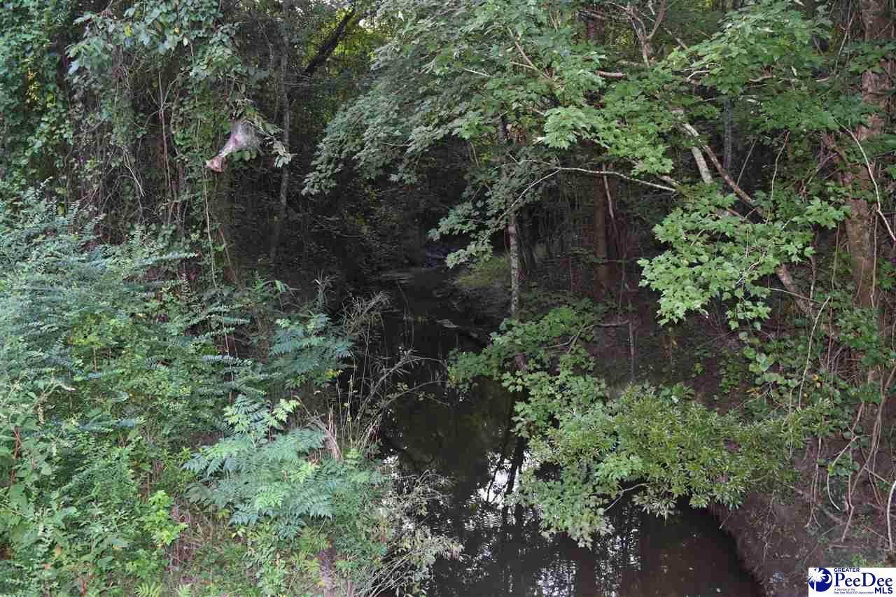 1264 Anderson Bridge Road - Photo 1
