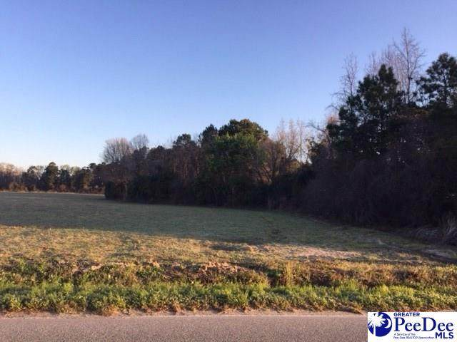 4600 Lot 3 Meadors Rd, Florence, SC 29501 (MLS #20202636) :: Coldwell Banker McMillan and Associates