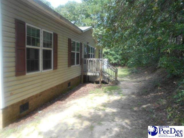 122 River Ridge Way, Swansea, SC 29160 (MLS #20202821) :: Coldwell Banker McMillan and Associates