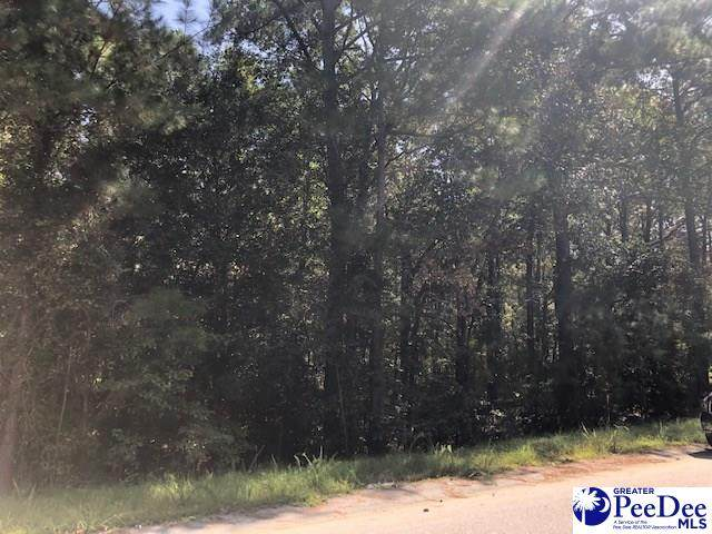 TBD White Dr, Hartsville, SC 29550 (MLS #20203053) :: Coldwell Banker McMillan and Associates