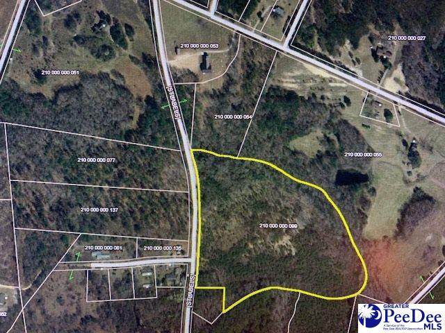 16.40 +/- Tract Paul Hillian Road, Chesterfield, SC 29709 (MLS #20203634) :: Crosson and Co