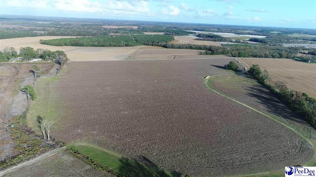 125.27 acres Sinclair Rd - Photo 1