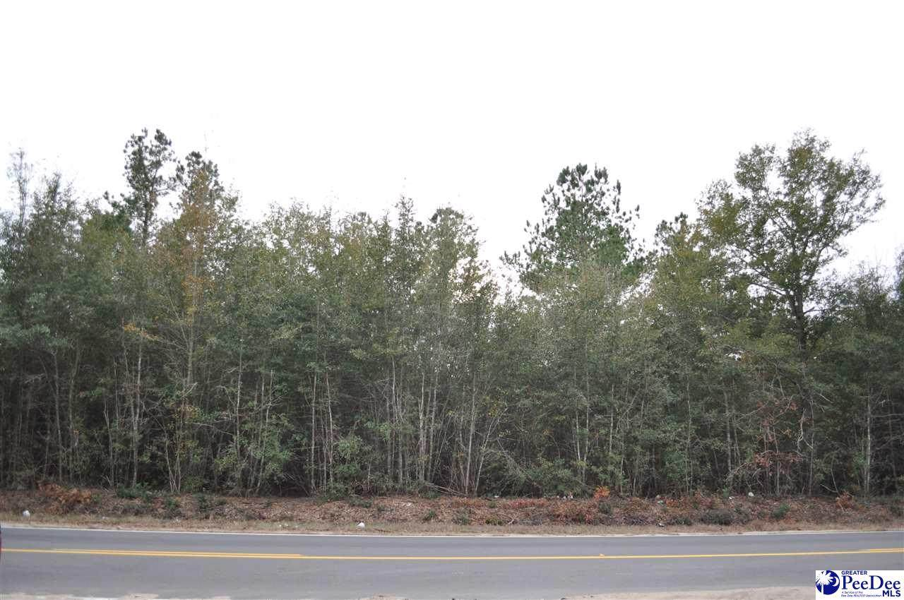 2.1 acres Oakridge Road - Photo 1