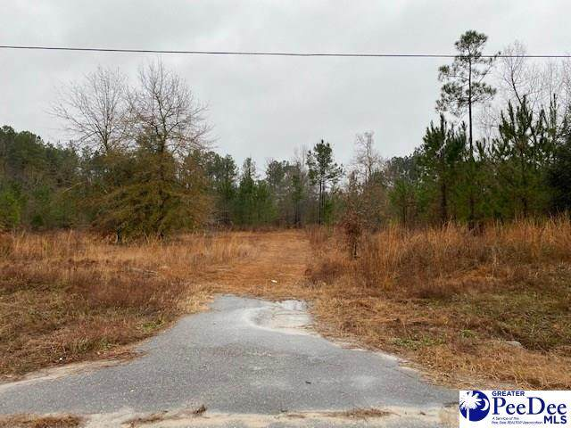 TBD Branchview, Hartsville, SC 29550 (MLS #20210115) :: Crosson and Co