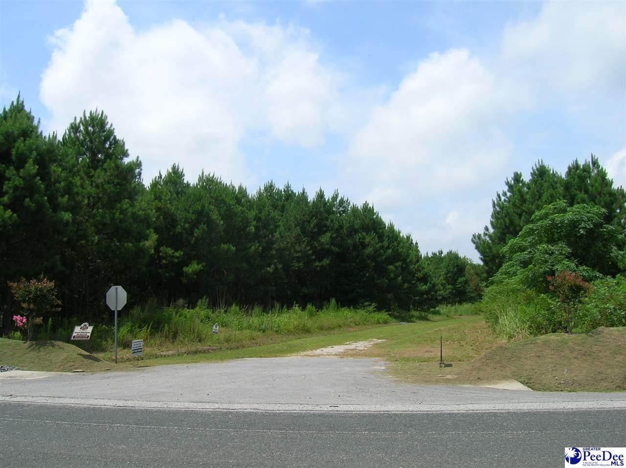 Lot 5 Drake's Nest Lane - Photo 1