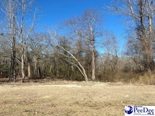 Lot #43 Glenmore Way, Florence, SC 29505 (MLS #20210239) :: Crosson and Co