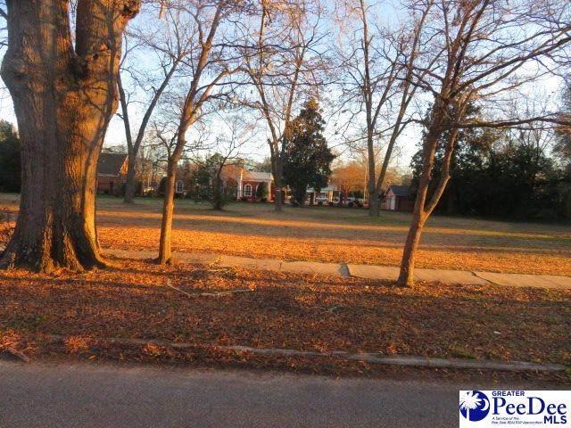 321 W College, Hartsville, SC 29550 (MLS #20210263) :: Crosson and Co