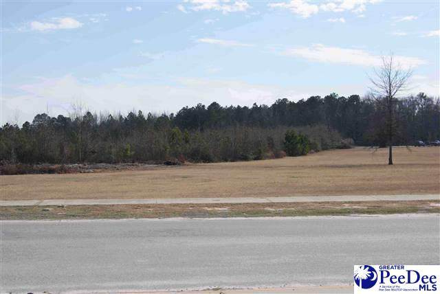 TBD3 Governor Williams Hwy, Darlington, SC 29532 (MLS #20210483) :: Crosson and Co