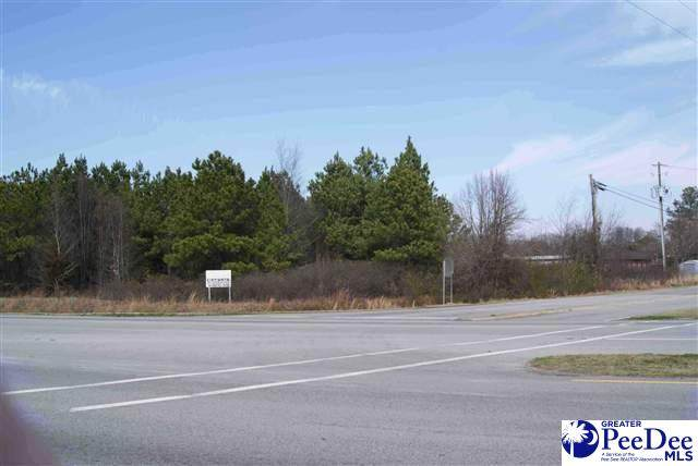 TBD2 Governor Williams Hwy, Darlington, SC 29532 (MLS #20210485) :: Crosson and Co