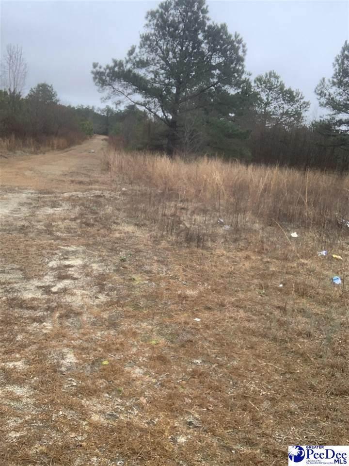 TBD Vicksburg Dr. - Photo 1