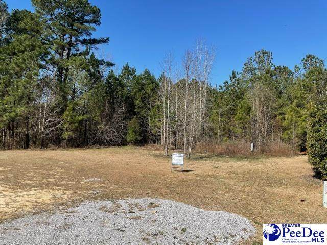 1721 Karudy Circle, Effingham, SC 29541 (MLS #20210831) :: The Latimore Group