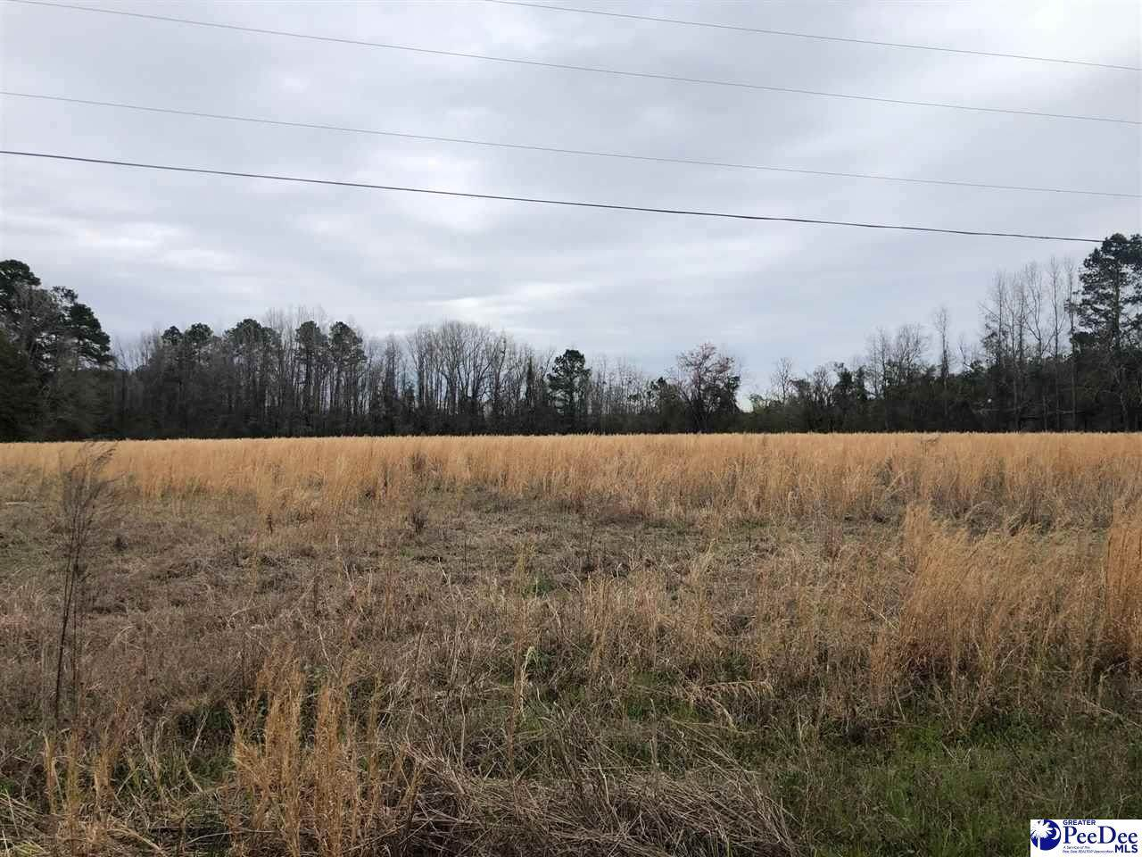 5 acres Stagecoach Road - Photo 1