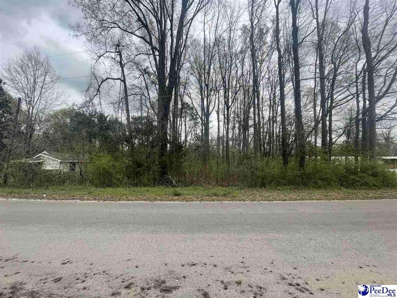 Lot 6 Allentown Drive - Photo 1