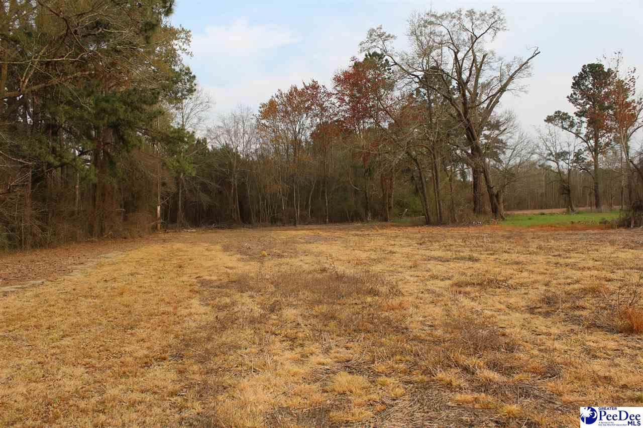 tbd 15.9 acres Hwy 57 - Photo 1