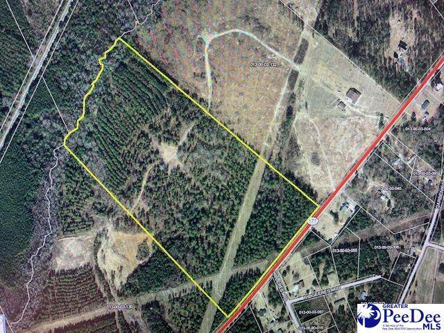 Hwy 177 45 Ac Tract, Wallace, SC 29596 (MLS #20211145) :: Crosson and Co