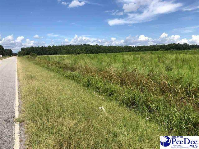 Lot 2 Horse Branch Rd, Turbeville, SC 29162 (MLS #20211400) :: Crosson and Co