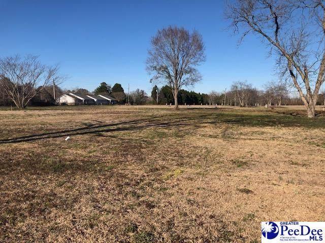 Lot Mcelveen Circle, Lynchburg, SC 29080 (MLS #20211424) :: Crosson and Co