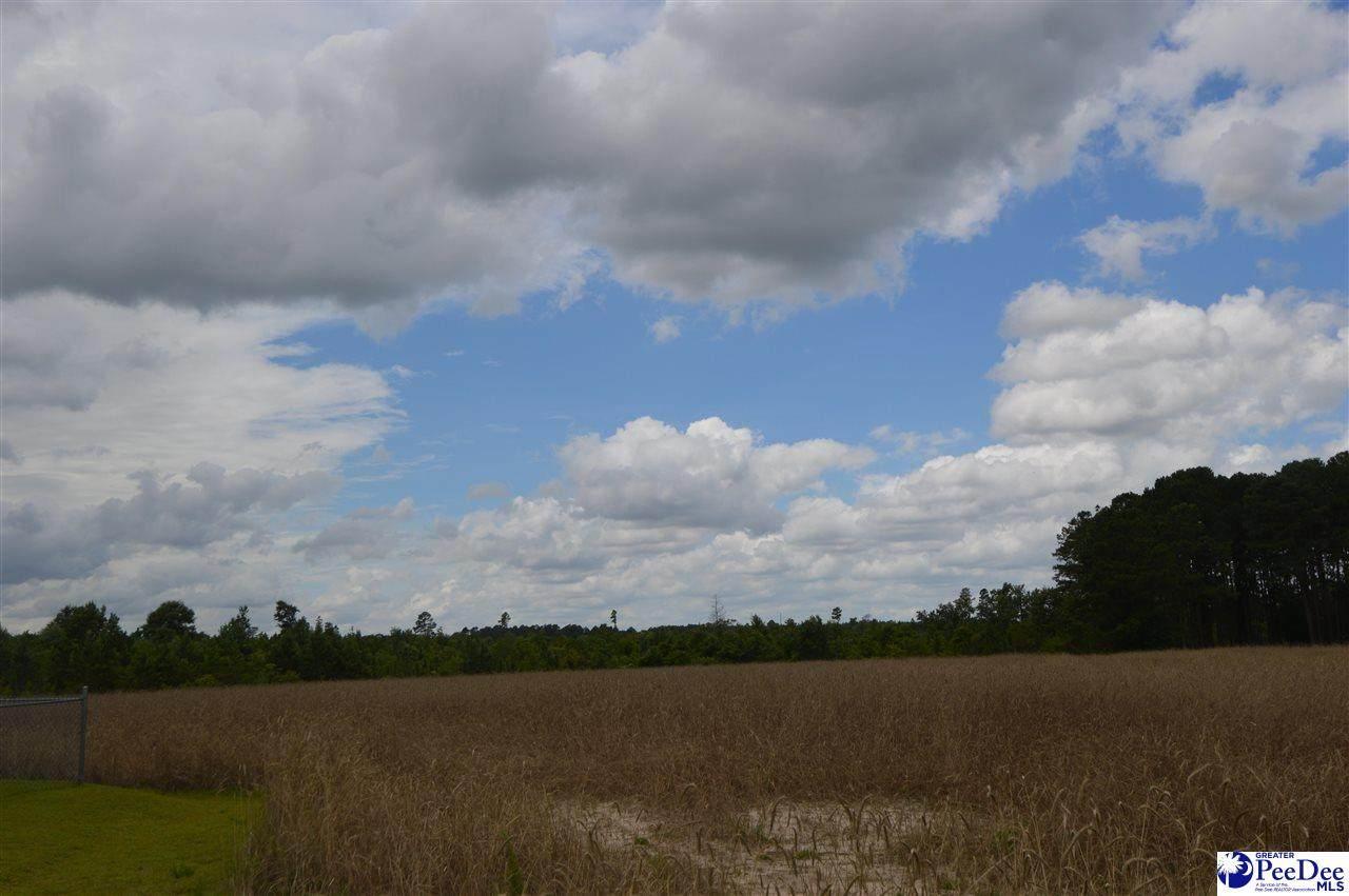 85 acres Bethlehem Road - Photo 1