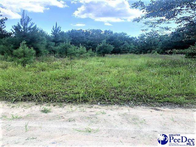 TBD Maggie Loop, Mullins, SC 29574 (MLS #20212503) :: Crosson and Co