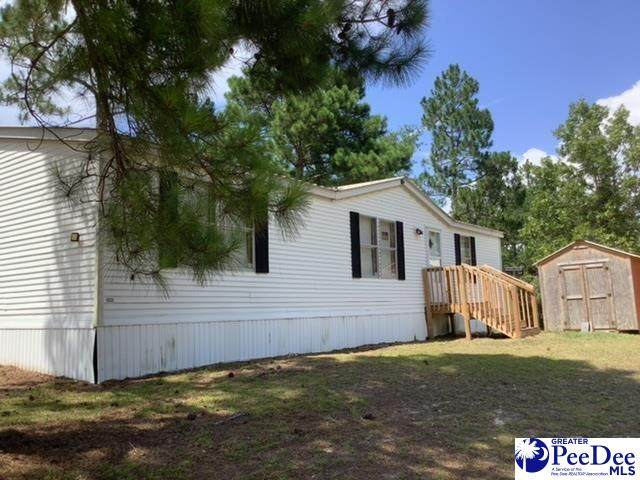 353 Coit Chapman Lane, Society Hill, SC 29593 (MLS #20212627) :: Crosson and Co