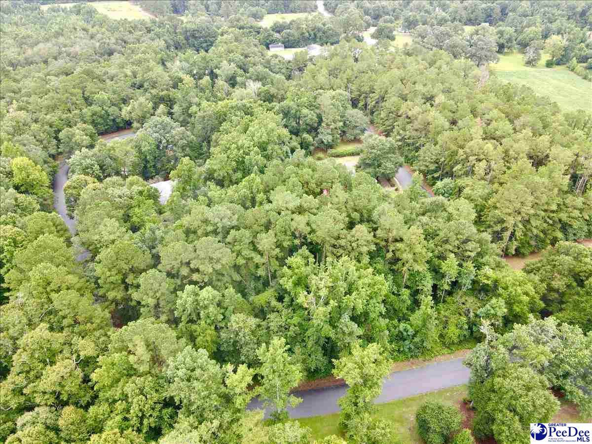 1401 Marion Green Road - Photo 1