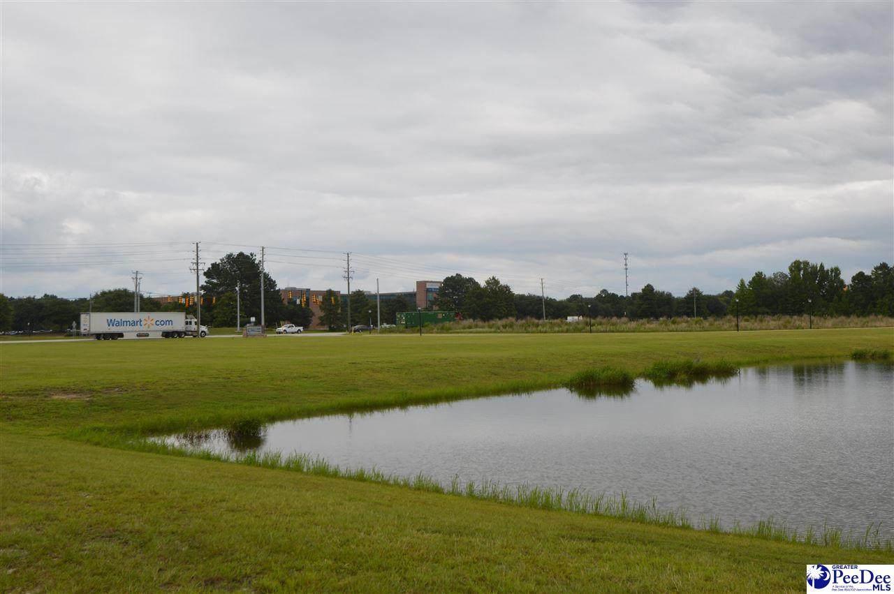 2.35 acres Bobo Newsome Highway - Photo 1