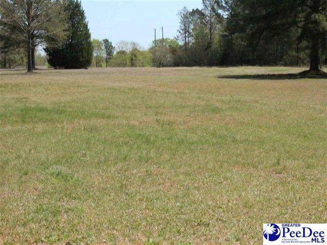 1716 Ashland Rd, Mcbee, SC 29101 (MLS #20213290) :: Crosson and Co