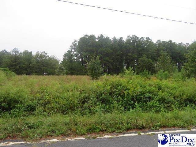 035 Ashland Rd, Mcbee, SC 29101 (MLS #20213448) :: Crosson and Co