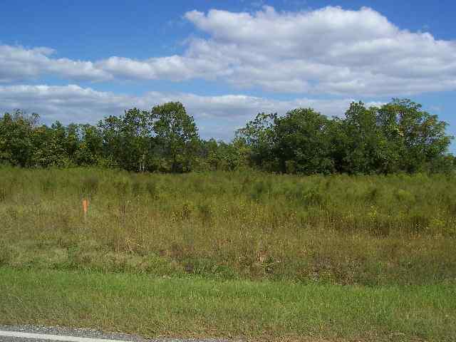Lot 24 S Timberlake Lane, Hartsville, SC 29550 (MLS #67207) :: RE/MAX Professionals