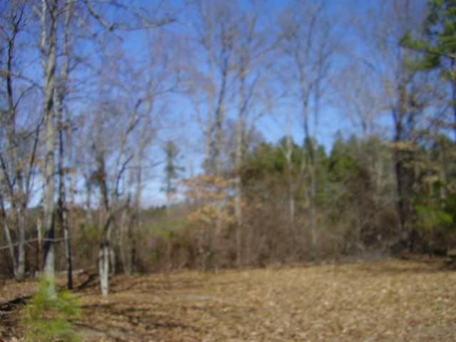 Lot 9 Ruby Road 1.00 Acres, Hartsville, SC 29550 (MLS #74339) :: RE/MAX Professionals