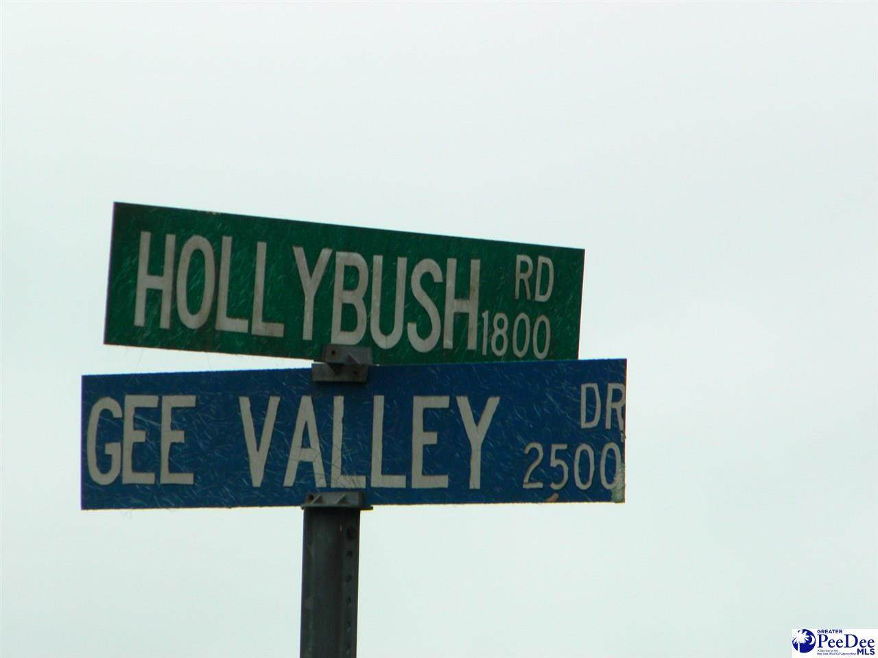 Lot #6 Gee Valley - Photo 1
