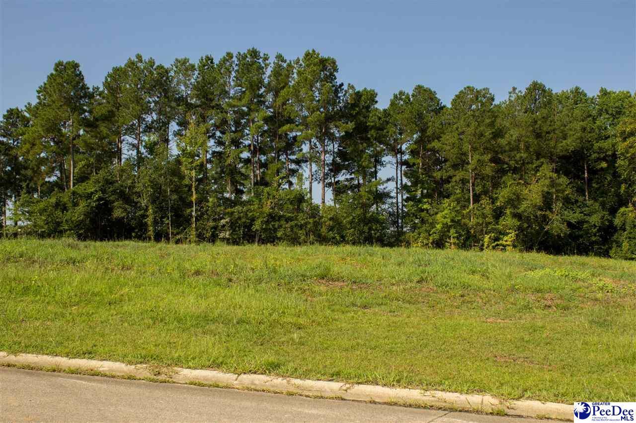 Lot 86 Shadow Creek Drive - Photo 1