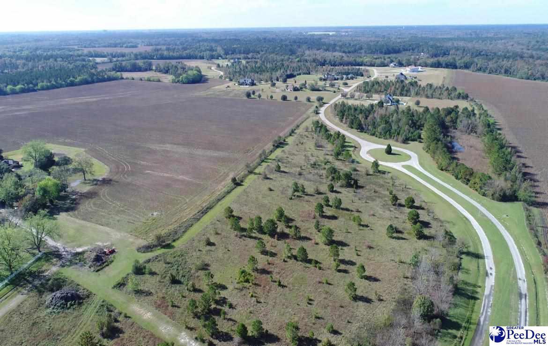 119 Acres Lazy Lane - Photo 1
