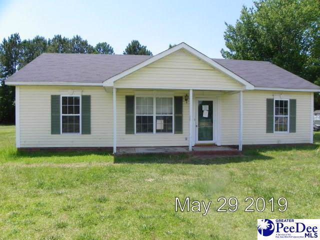 2425 Wills Place, Effingham, SC 29541 (MLS #20191904) :: RE/MAX Professionals