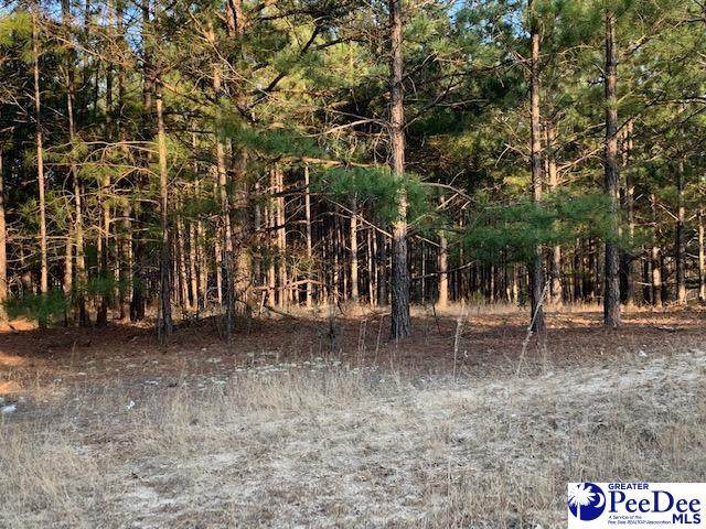 Hunts Mill Road 3.55 Ac Tract - Photo 1