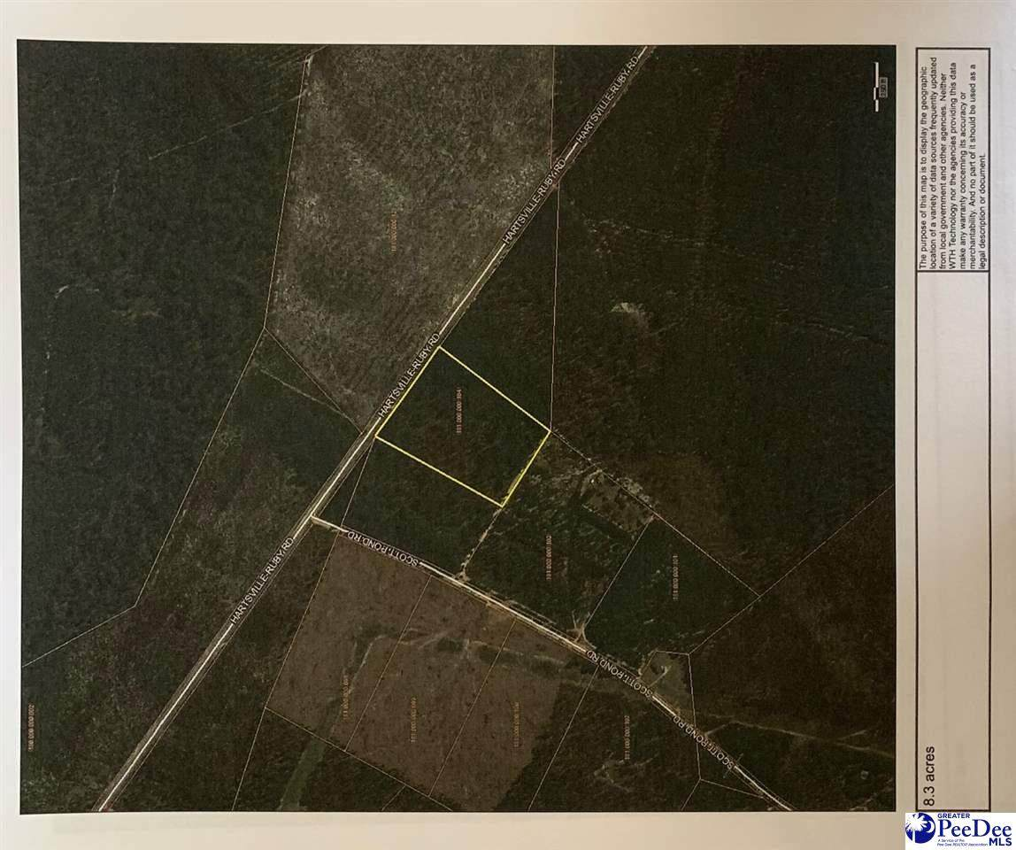 14948 Hartsville Ruby Rd (8.3 Acres) - Photo 1