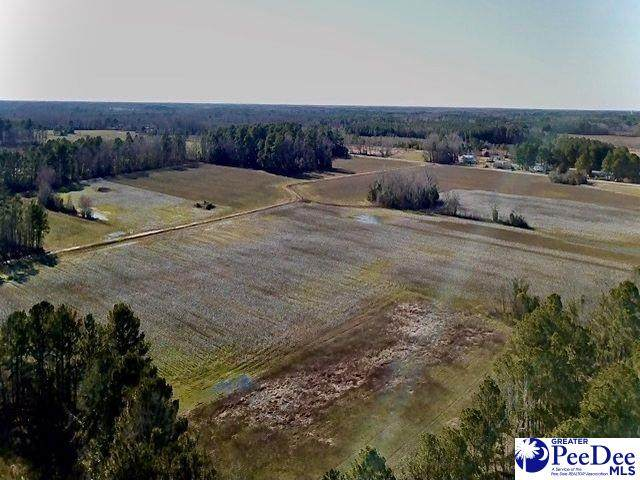 401 Oates Hwy & Cooter Crossing Rd, Lamar, SC 29069 (MLS #20210591) :: The Latimore Group
