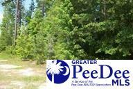 2352 Walker Swinton Road, Timmonsville, SC 29161 (MLS #126355) :: RE/MAX Professionals